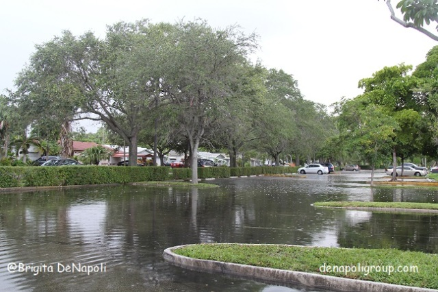 Still Raining in South Florida. Blog_denapoligroup.com