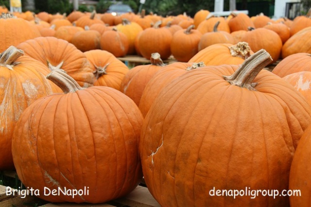 First Day of Fall. Blog_denapoligroup by Brigita DeNapoli