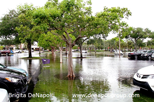 Parking lot flooding in Davie, FL (4)