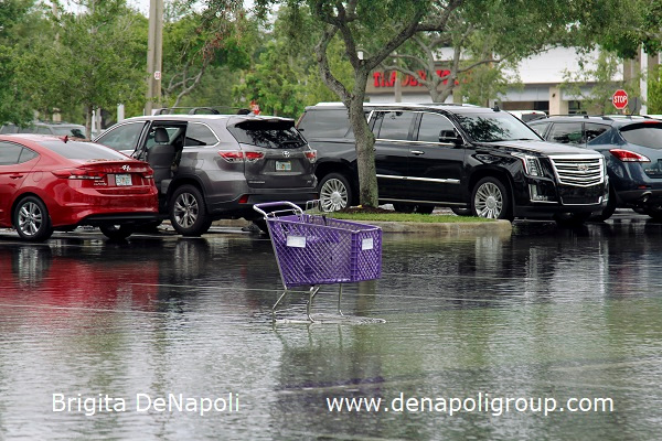 Parking lot flooding in Davie, FL (5)