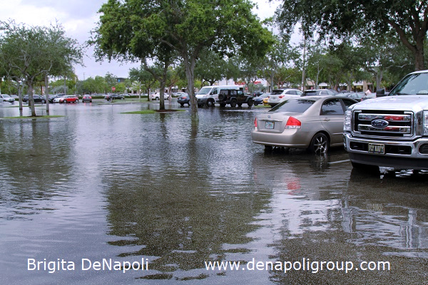 Parking lot flooding in Davie, FL (6)